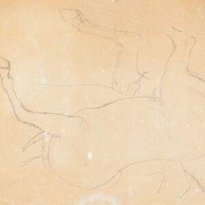 Study of a Horse [verso]
