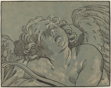 Cupid Asleep