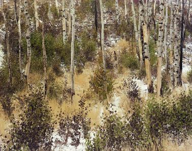 Untitled (Sawtooth Valley, Idaho) (#94235)