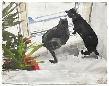 Condo Cats