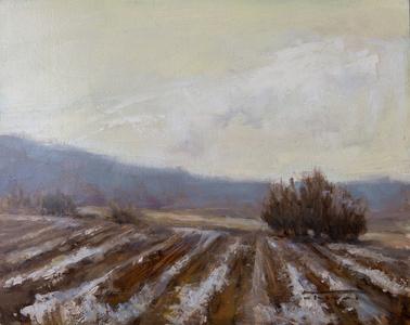 Winter Furrows