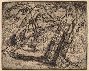 Untitled (Wooded Landscape)