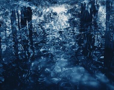 Blue Bayou #37