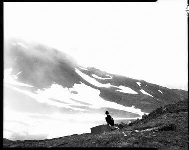 Mist, Self portrait, Oddskar, iceland
