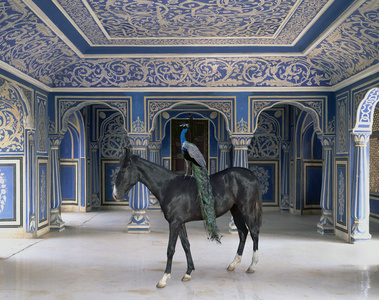 "Sikanders Entrance, Chandra Mahal, Jaipur City. From the series ""India Song"""