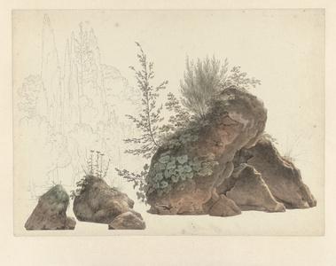 Overgrown Rocks