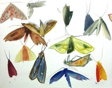 Untitled V (Moths)