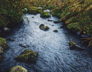 Dawnstream River