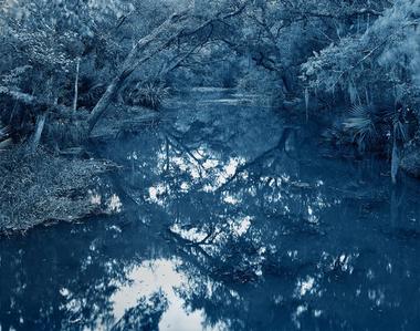 Blue Bayou #39