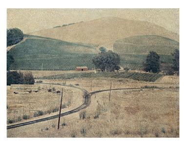 Vineyard, California