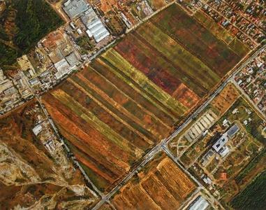 Trapezoid Farmer's Cooperative