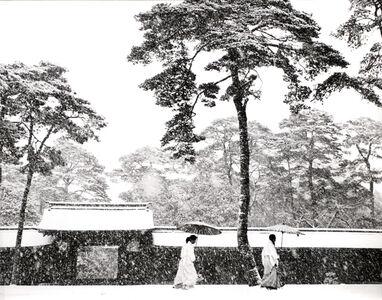 In the Court of the Meiji Shrine, Tokyo, Japan
