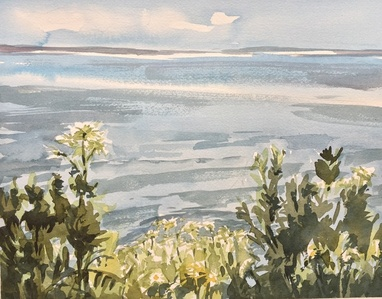 Peconic Bay with Daisies