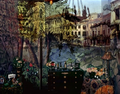 Camera Obscura: View of Volta del Canal in Palazzo Room Painted with Jungle Motif, Venice, Italy