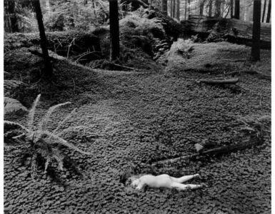 Child in Forest, 1951