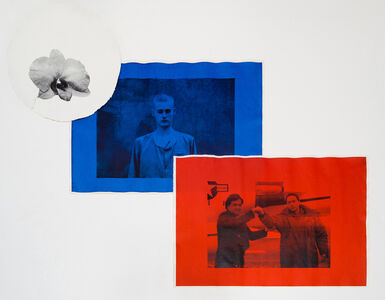 Untitled (Black [Kimilsungia, Orchid], Blue [Matthew Todd Miller, No. 107], Red [Evan Carl Hunziker])