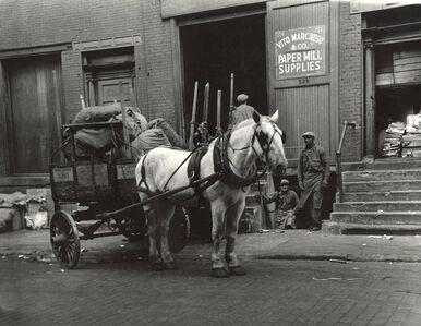 Work Horses, Greenwich Village, New York City