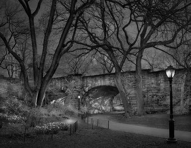 West Side Sunrise, Central Park, New York City