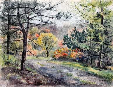 Blair Woods