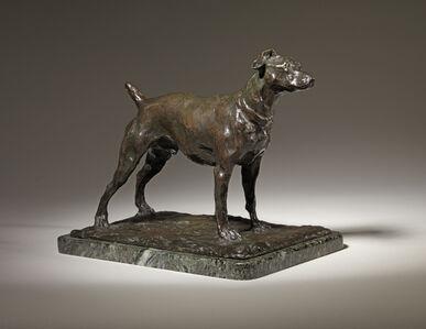 32. Royal Terrier