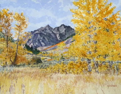 Shadowed Boulders and Bright Aspens