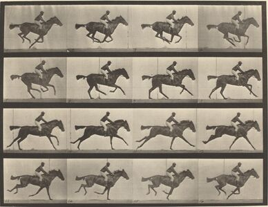 Animal Locomotion, Plate 626