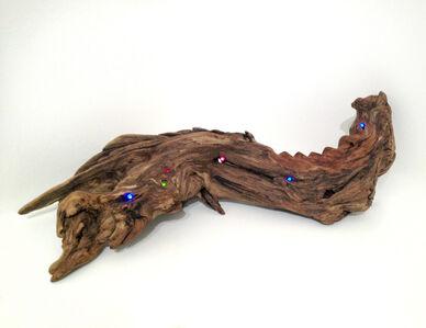 Untitled (LED Driftwood)