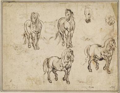 Studies of Horses [recto]