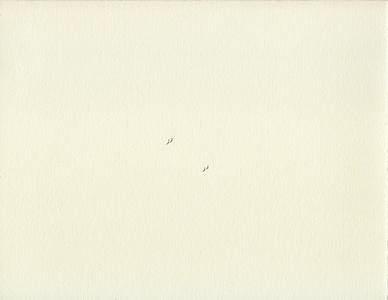 Marées humaines (Conflits II) / Human Tides (Conflicts II)