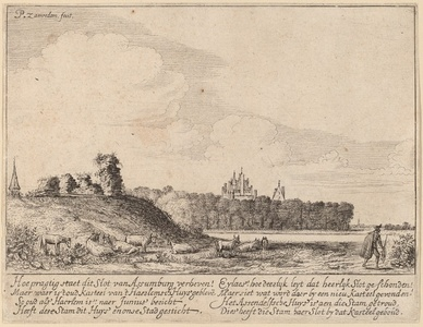 Ruins of Assemburg Castle