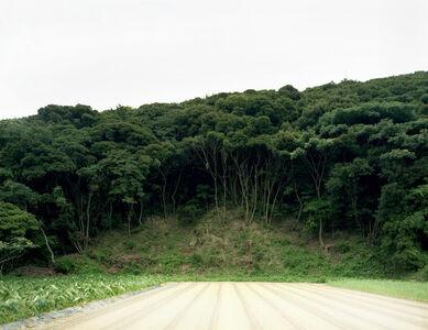 Missing Trees
