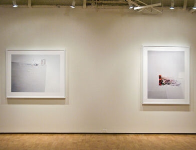 Laura Letinsky: Ill Form and Void Full