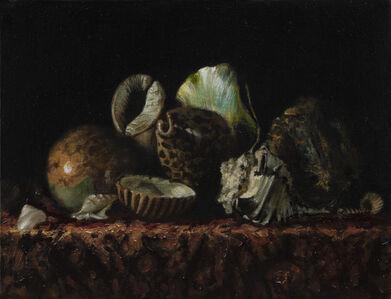 Bodegón con conchas VI