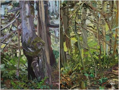 Clear Paths (Diptych)