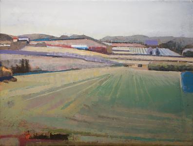 Field & Hillside in Burgundy