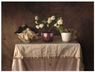 Altar profà 26