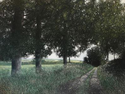Chemin en Limousin