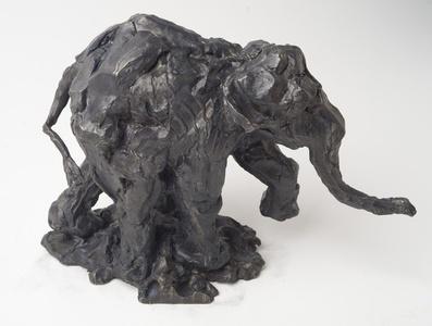 Untitled # 38 Elephant Series