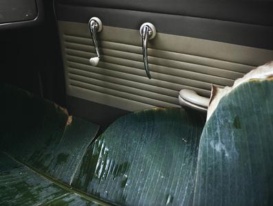 VW do Brazil