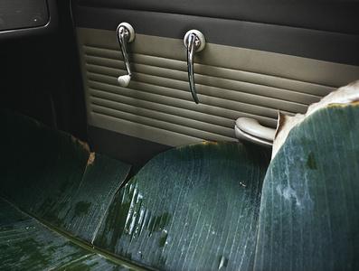 VW Do Brazail