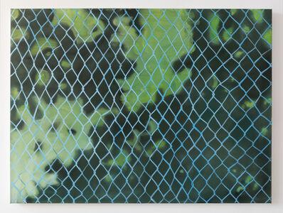 Dappled Fence