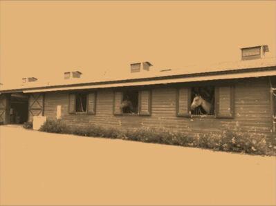 Red Barn Farm 9