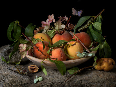 Peaches and Hydrangeas, After GG (from the series Natura Morta)