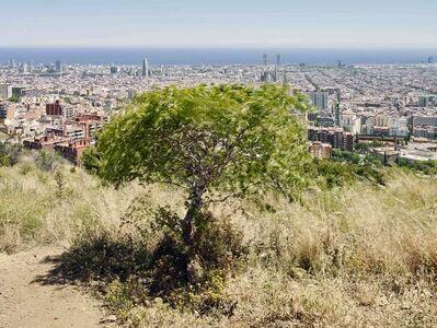 Barcelona 37 Ed. 1/8
