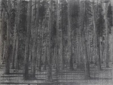 Forêt, 2006-2007