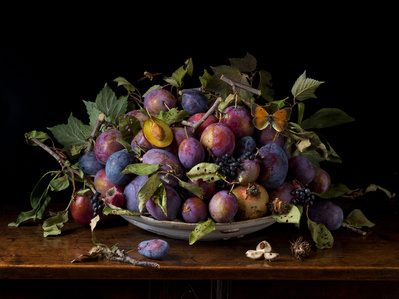 Italian Plums, After GG (from the series Natura Morta), 2015