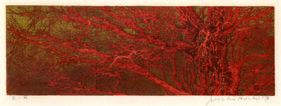 Joichi Hoshi, 'Red Branches', 1973