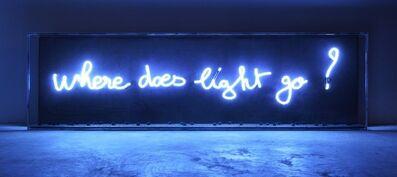Fabien Chalon, 'Where does light go?', 2017