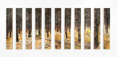 Jeppe Lauge, 'between the lines', 2018