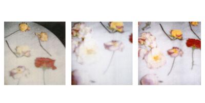 Cy Twombly, 'Light Flowers I, II, III, Gaeta', 2008
